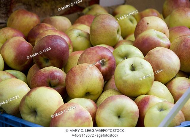 Johannes Gold Apples. Red and gold apples. Havelska Market, Prague, Czech Republic