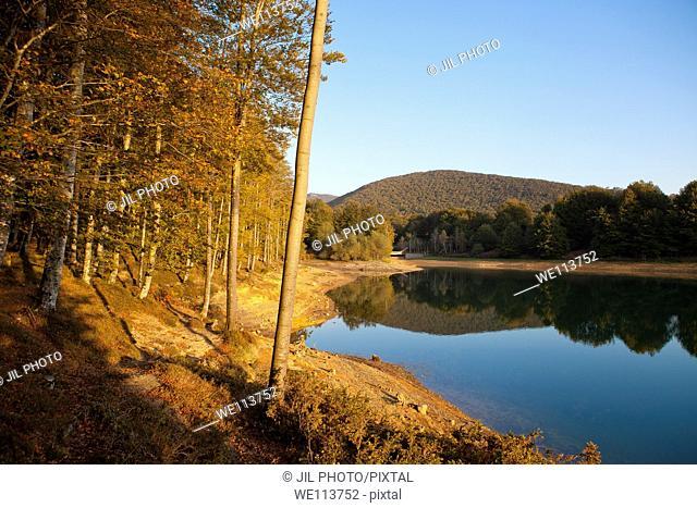 Forest of Gentiles  Lareo Reservoir  Aralar range  Ataun  Basque Country, Gipuzkoa  Spain