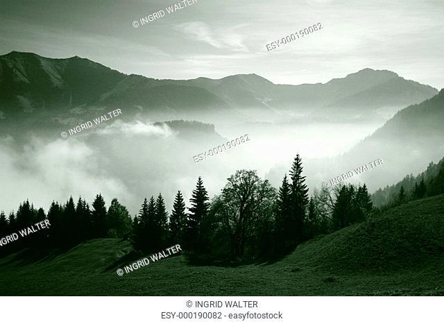 Nebelgebirge Monochrom