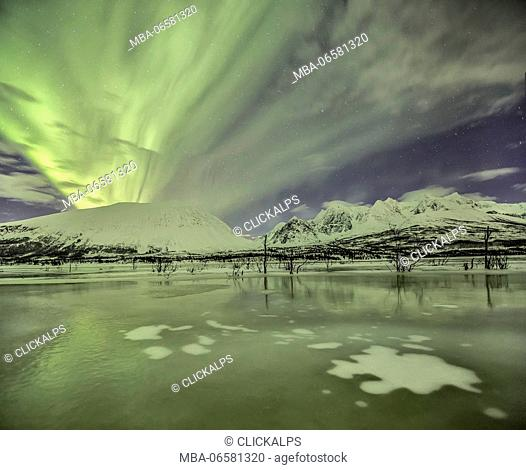 Aurora Borealis on the frozen lagoon of Jaegervatnet Stortind Lyngen Alps Tromsø Lapland Norway Europe