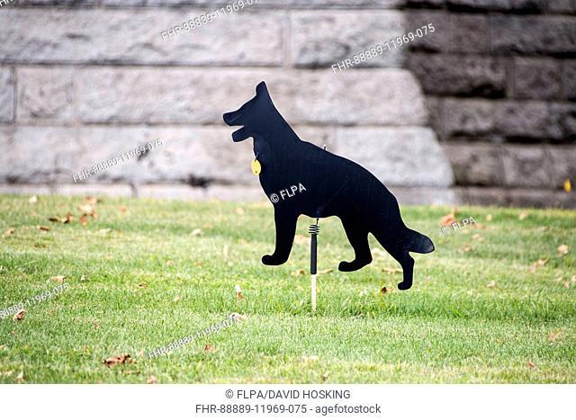 twirling dog bird scarer, use to frighten birds off a grass lawn