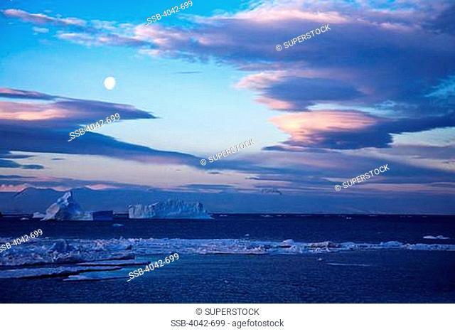 Tabular icebergs in the ocean at dusk, Antarctic Peninsula, Antarctica