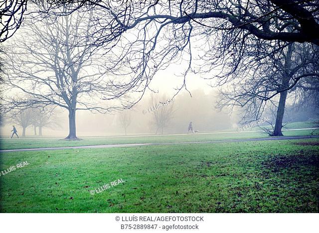 Men walking through the park in a foggy morning. Kensington Park Gardens, City of Westminster and Kensington, Chelsea, London, UK