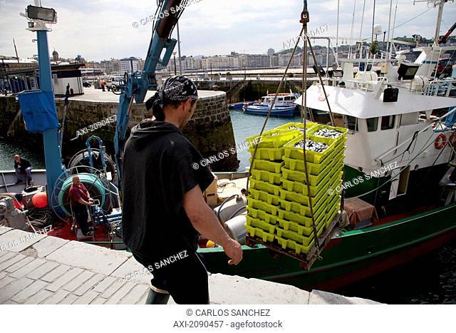 Man Unloading Fishing Crates At Port Of San Sebastian, Guipuzcoa, Basque Country, Spain