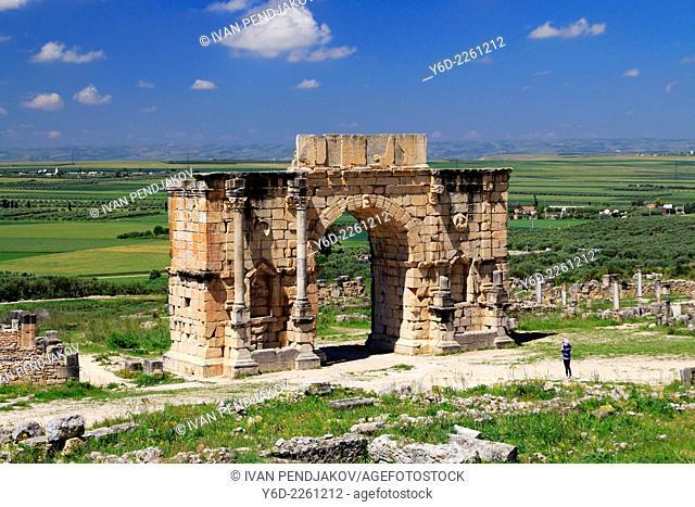 The Triumphal Arch of Caracalla, Volubilis, Morocco
