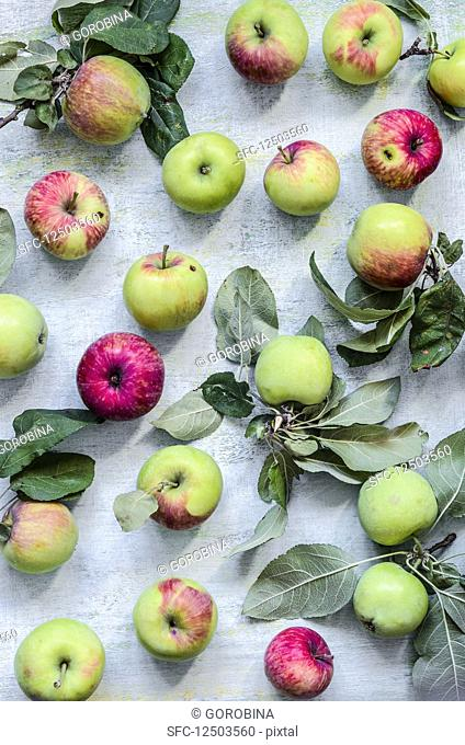 Apples on a old rustic surface