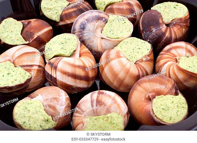 Snails with herb butter as background