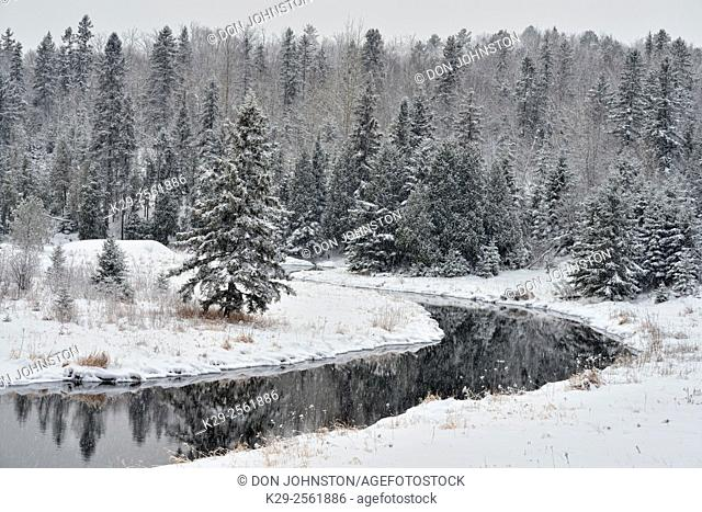 Open water and snow on Junction Creek in winter, Greater Sudbury, Ontario, Canada