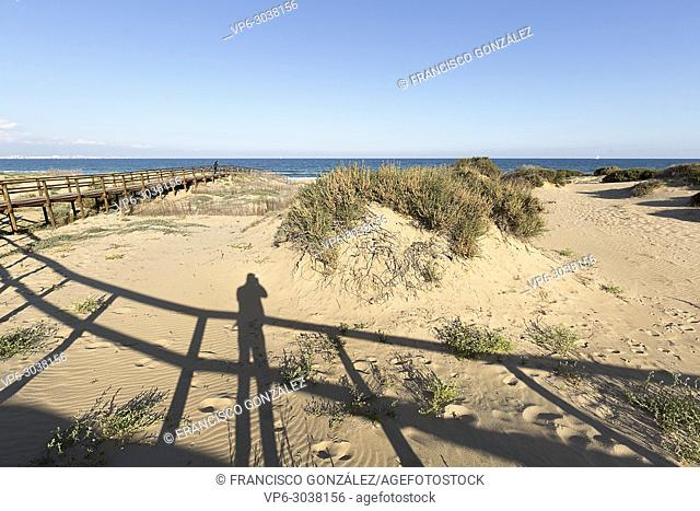Wooden walkway in the Arenales del Sol, municipality of Elche, in the province of Alicante in Spain