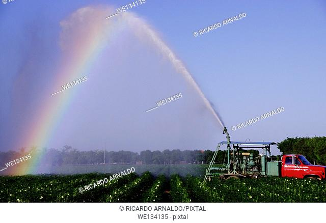 Irrigation truck in Ocra field, Redland agricultural area, Miami