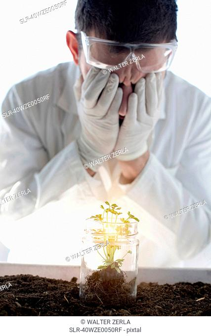 Scientist examining glowing plant in jar