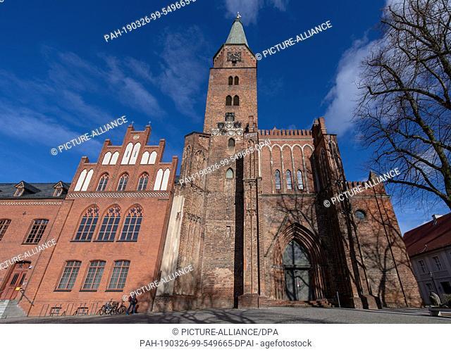 25 March 2019, Brandenburg, Brandenburg an der Havel: The tower of the Brandenburg Cathedral rises into the sky. The Cathedral of Brandenburg