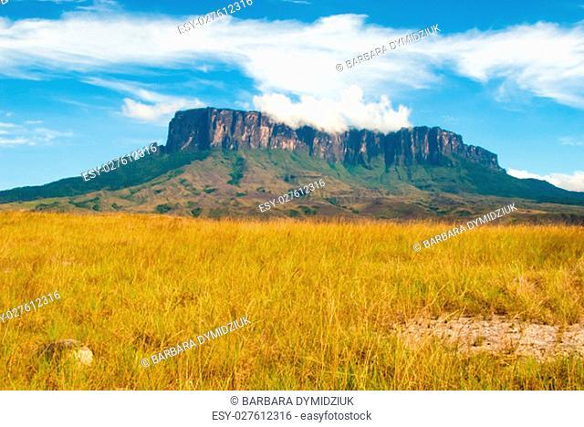 View of Kukenan Tepui, Great Savanna, Canaima National Park, Venezuela
