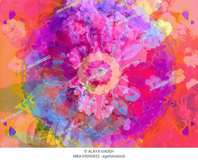 Composing of flowers and Mandala ornament