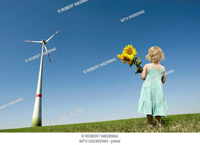 Girl holding sunflowers in a windfarm, Bavaria, Germany
