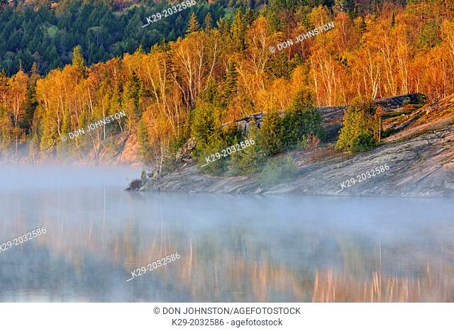Spring foliage in the fog along the shores of Simon Lake, Greater Sudbury (Naughton), Ontario, Canada