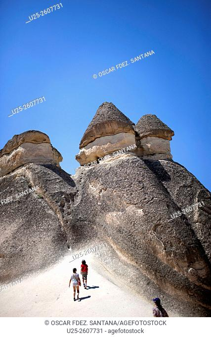 Monks Valley, Pasabag, Nevsehir, Central Anatolia, Turkey