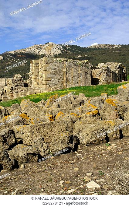Rate (Spain). Archaeological remains in Roman city of Baelo Claudia