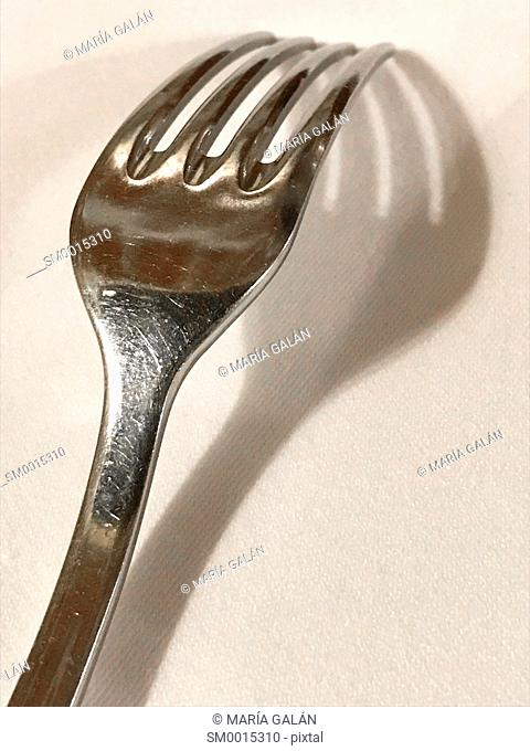 Fork and its shadow