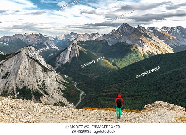 Female hiker views from summit over mountain landscape, panoramic view, Sulphur Skyline Trail, Nikassin Range, Jasper National Park, British Columbia, Canada
