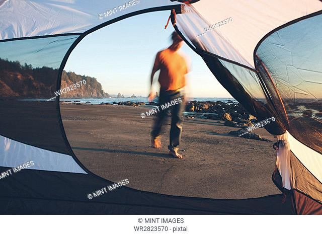 Man walking on beach at dusk, camping tent in foreground, Olympic National Park, Washington, USA