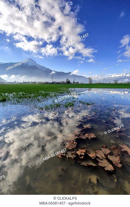 The natural reserve of Pian di Spagna flooded with snowy peaks reflected in the water Valtellina Lombardy Italy Europe