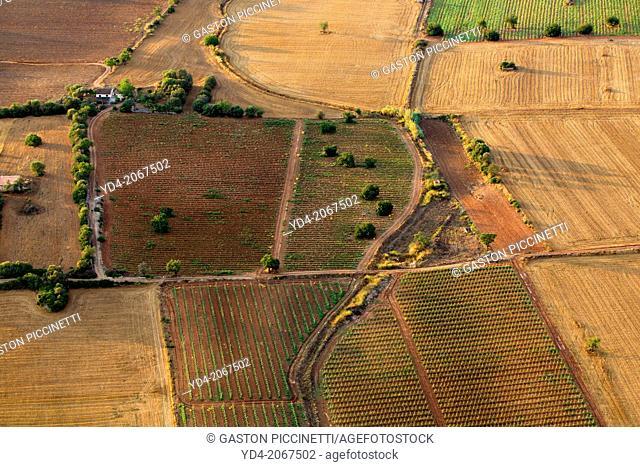 Aerial view of Mallorca agricultural lands, Mallorca, Balearic Island, Spain