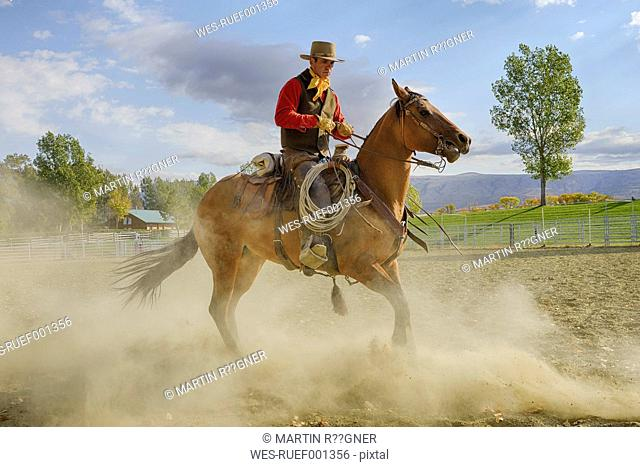 USA, Wyoming, Cowboy working with horse