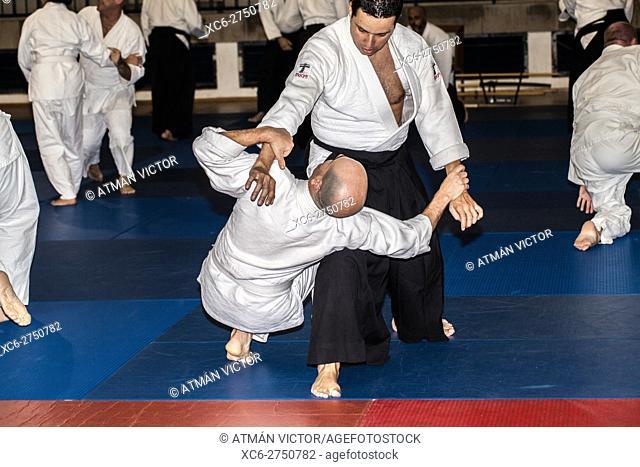 aikido adult training