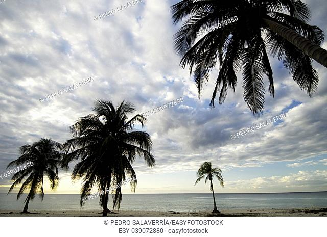 sunset at the beach tropical Maria la Gorda, Guanahacabibes Peninsula in Cuba