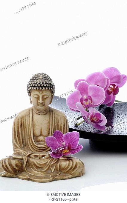 Buddha statuette and orchid blooms