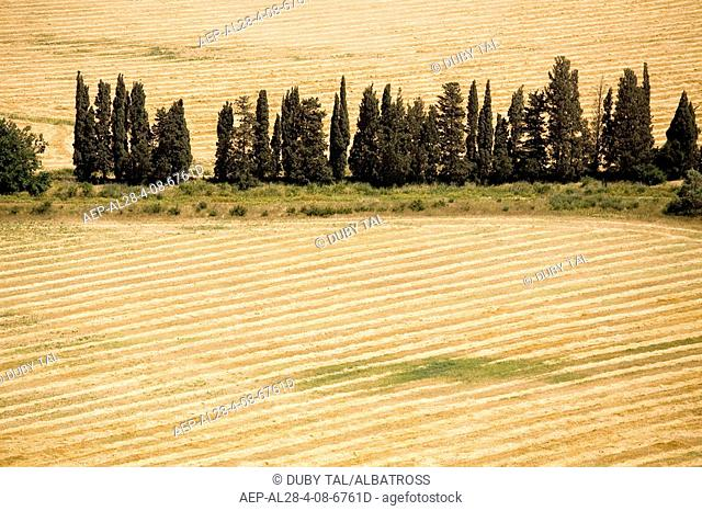 Aerial photograph of a plowed field in the Sharon
