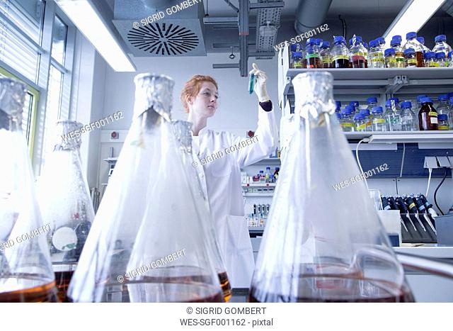 Young female natural scientist working in biochemistry laboratory