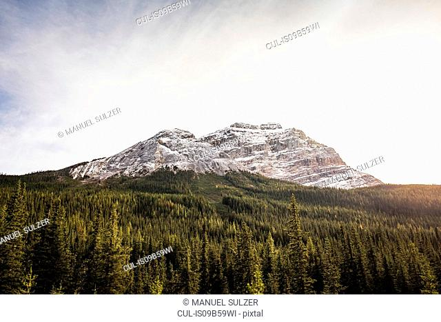 Canadian Rockies, Golden, British Columbia, Canada