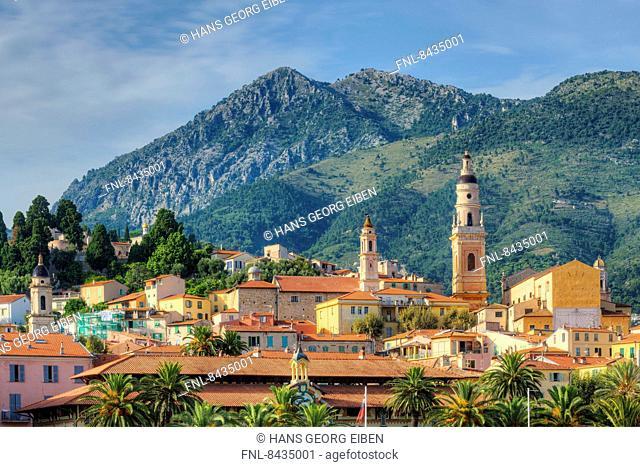 Menton, Alpes-Maritimes, Provence - Alpes-Cote d Azur, France, Europe