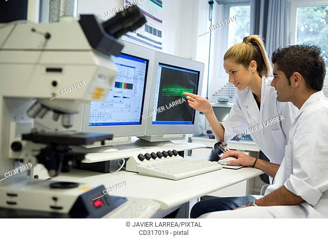 Polytechnic School, University of the Basque Country, Donostia. Confocal Laser Scanning Microscope, Leica DM RXE TCS-SP2