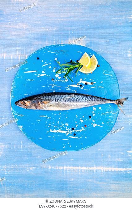 Mediterranean seafood concept in blue