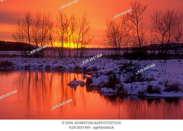 Sunset over Kelly Lake with bare tree reflections in open water of Robinson Creek, Sudbury, Ontario, Canada