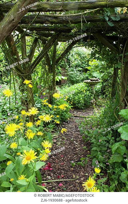 Archway undereplanted with perennials leading through the garden. Cottage garden in Kent England