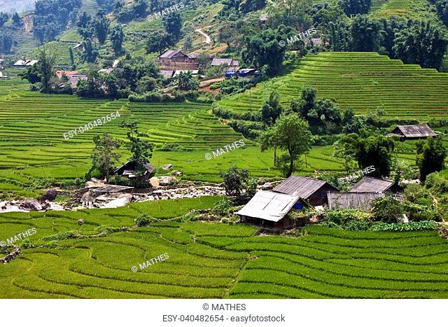 Paddy fields and villages in northern Vietnam