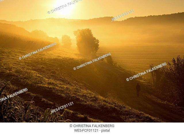 Italy, Tuscany, sunrise in rolling landscape near Lucca