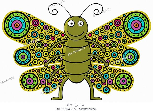 butterfly which have colorful wings