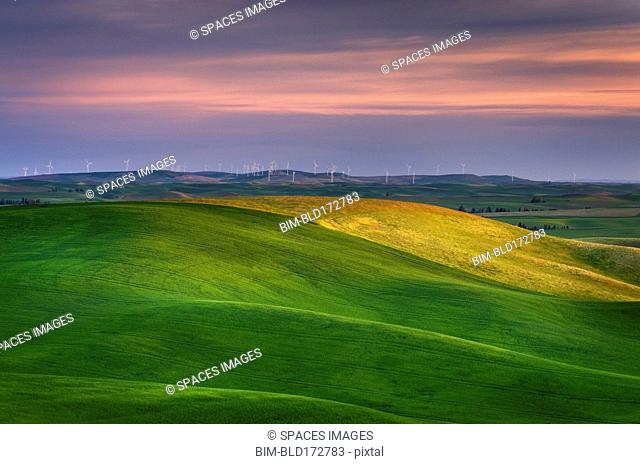 Rolling green hills in rural landscape