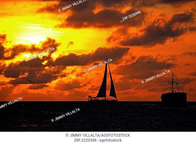Parque Nacional Archipielago Los Roques, es un hermoso archipiélago de pequeñas islas coralinas que se encuentra ubicado en el Mar Caribe y ocupa 221