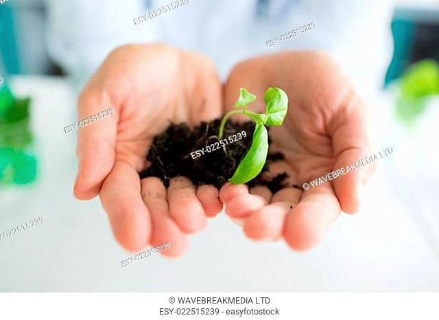 Man holding a little plant