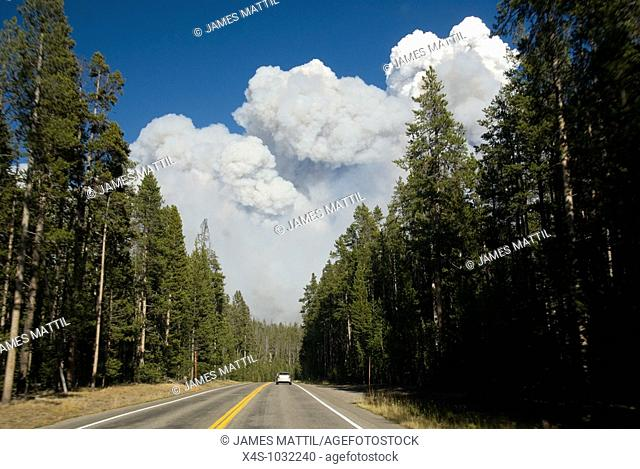 Clouds of smoke from a forest fire billow above a road in Yellowstone Park