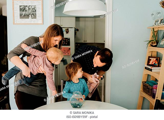 Mid adult couple at table with female toddler and baby son