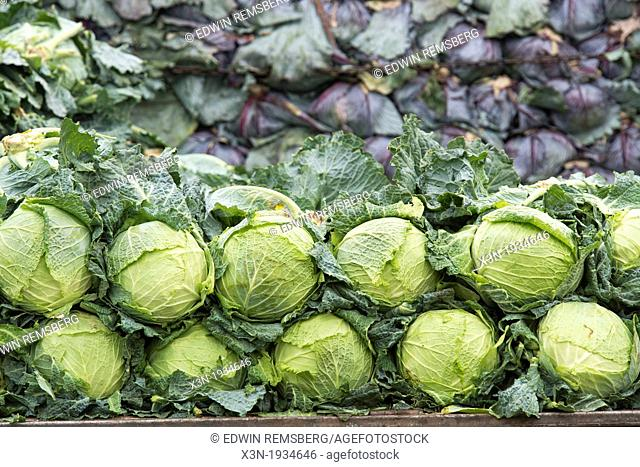 Cabbages stacked up at Lo Valledor central wholesale produce market in Santiago, Chile