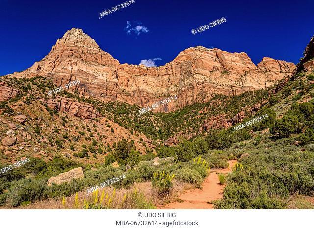 The USA, Utah, Washington county, Springdale, Zion National Park, Watchman Trail