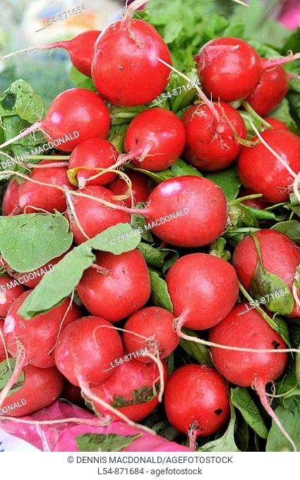 Red radishes Produce display at farmer's flea market florida